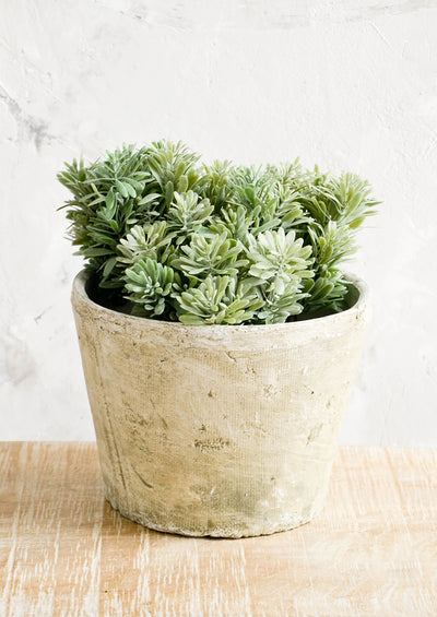 Mossy Patina Planter hover