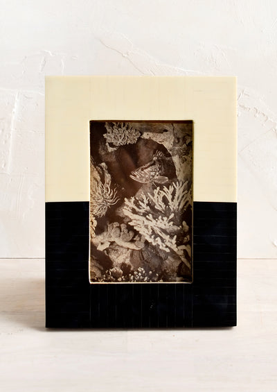 Noisette Picture Frame