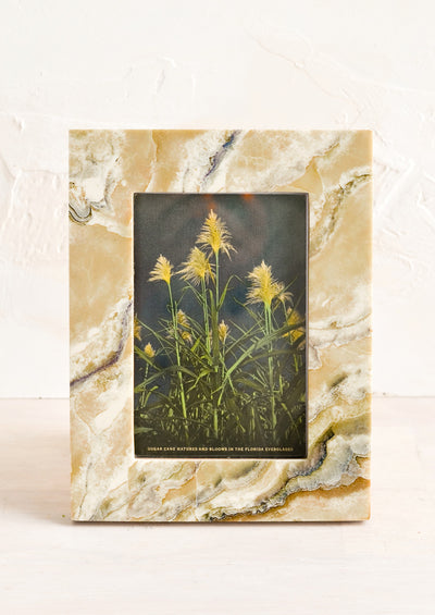 A picture frame with marbled pattern.