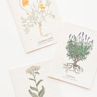 2: Product shot showing three styles of notecards.