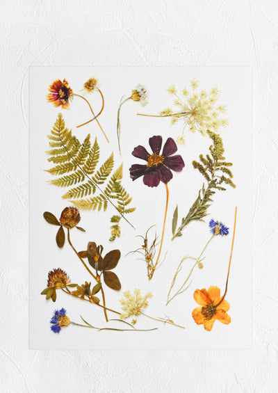 A digitally printed art print of pressed wildflowers and ferns on white background.