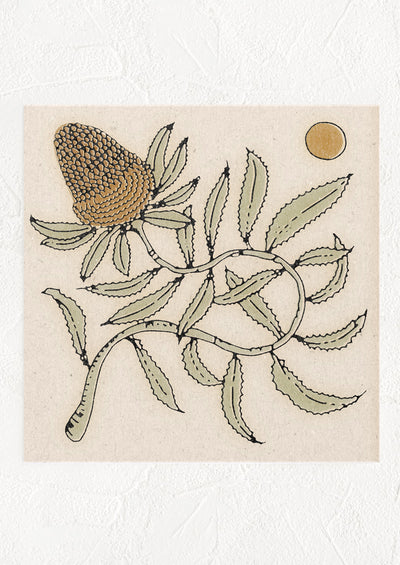 A square digital art print with image of a banksia flower and sun.