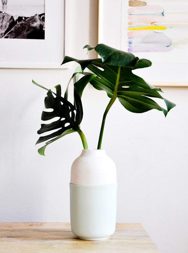 The Dot Vase in Mint