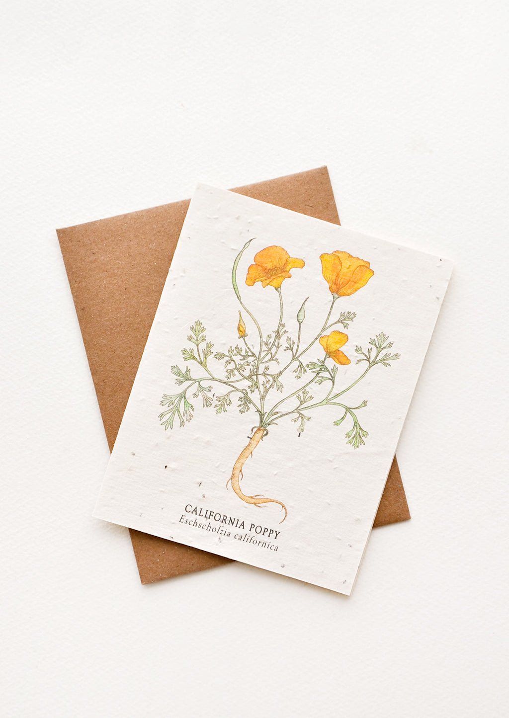 California Poppy: Notecard with drawing of a poppy flower and brown envelope.
