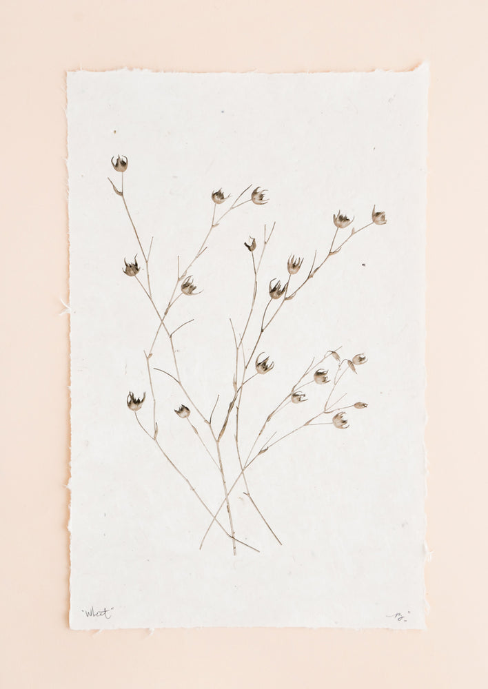 1: Stalks of long grasses are printed in black and white on rough edged paper.