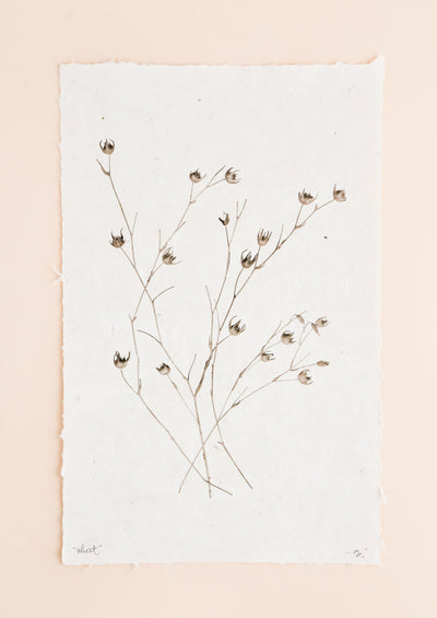 Stalks of long grasses are printed in black and white on rough edged paper.