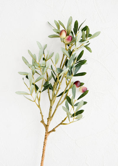 Realistic looking faux olive branch stem with leaves and olives