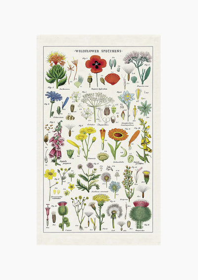 Wildflower Species Tea Towel hover