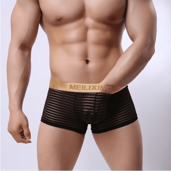 HIPSB Men Boxer Shorts SexY Underwear Striped Transparent
