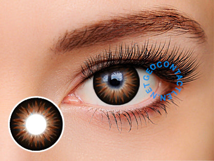 Geo Bella Brown Lens BS204 - Geo Contact Lens