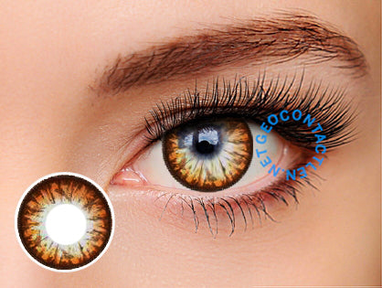 GEO Big Grang Grang Brown Lens WHC-244 - Geo Contact Lens