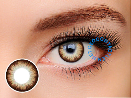 Geo Eyevelyn Brown (Silicone Hydrogel) Lens SIB24 - Geo Contact Lens