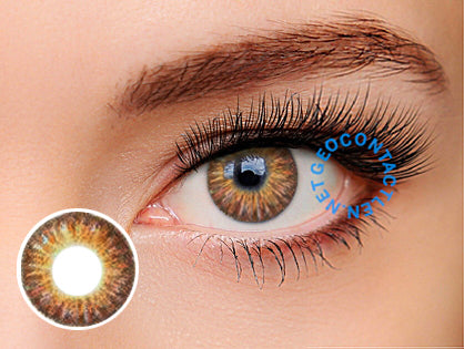 Geo Tri Color Brown Contact Lens Berry Berry Chessy Cm 902 Geo Contact Lens Geocontactlens Net