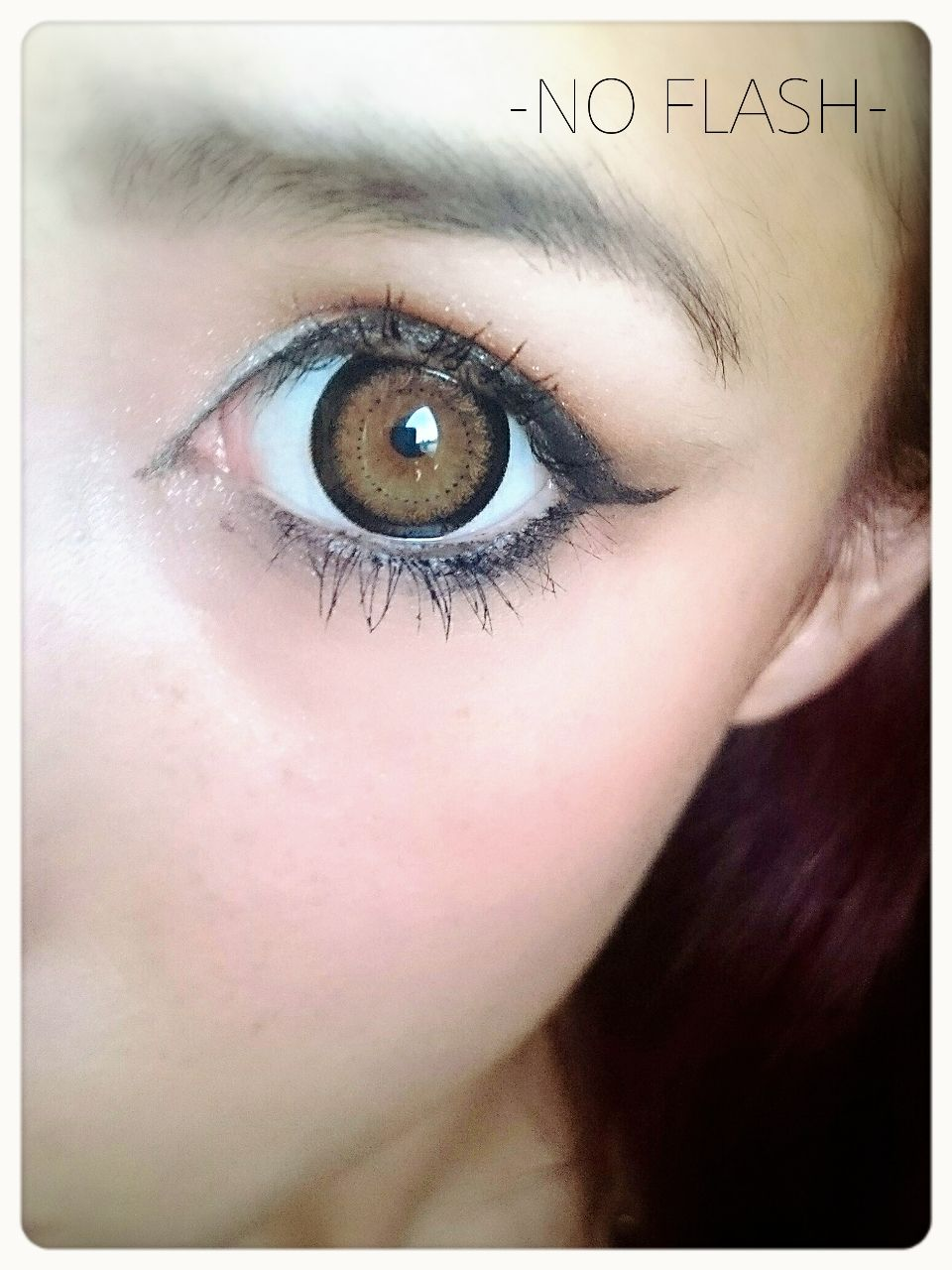 Geo Xtra Lace Brown Lens W4U-244 - Geo Contact Lens