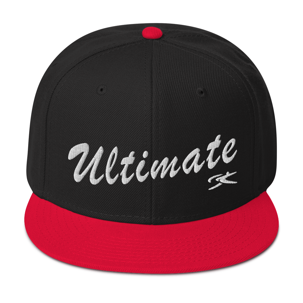 Vintage USI Snapback Hat (15 colors)