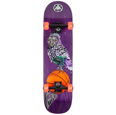 Welcome Skateboards Hooter Shooter Complete on Bunyip Complete Skateboard 8