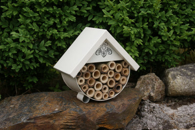 Bee and Insect House