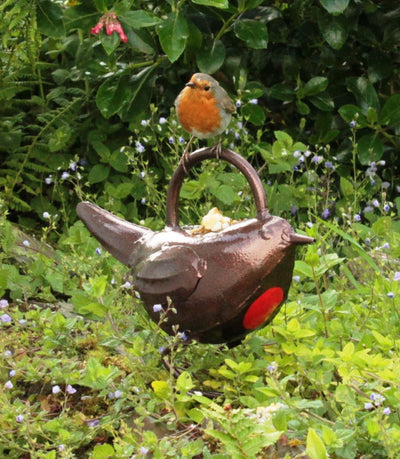 Robin Watering Can