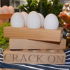 Egg Holder - Crack On - annabeljames
