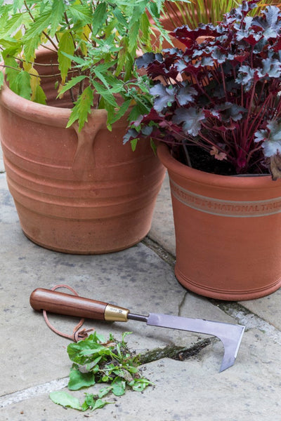 National Trust Patio Weeding Knife