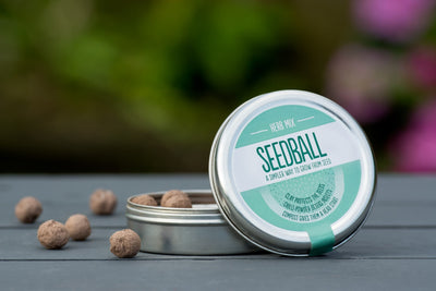 Seedball - Herb Mix