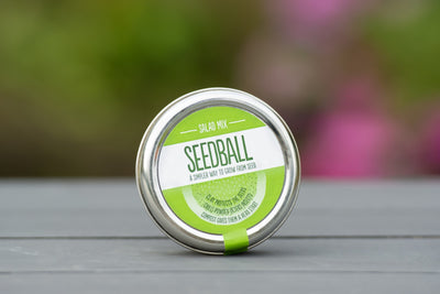 Seedball - Salad Mix