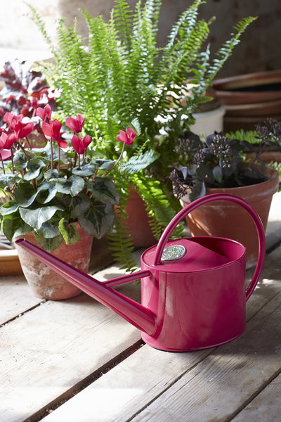Watering Can - Raspberry - annabeljames
