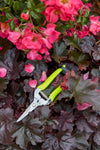 Flower and Fruit Snips - Yellow