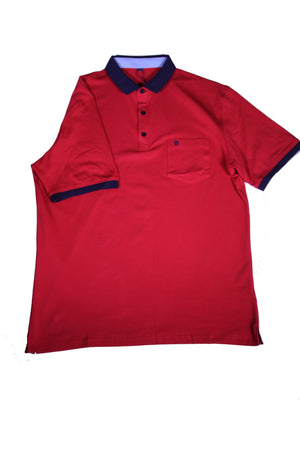 POLO WITH CONTRASTING COLLAR