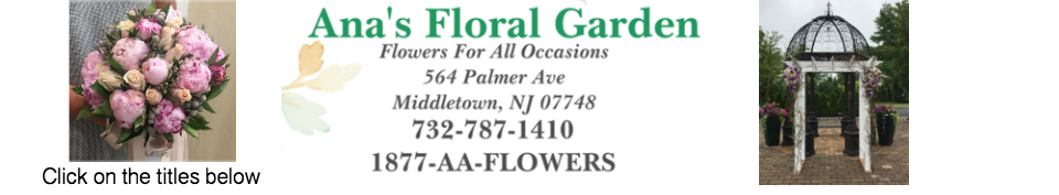 Anas Florist And Gifts