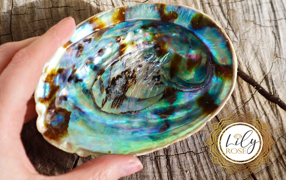 Abalone Uses & Crystal Healing Properties