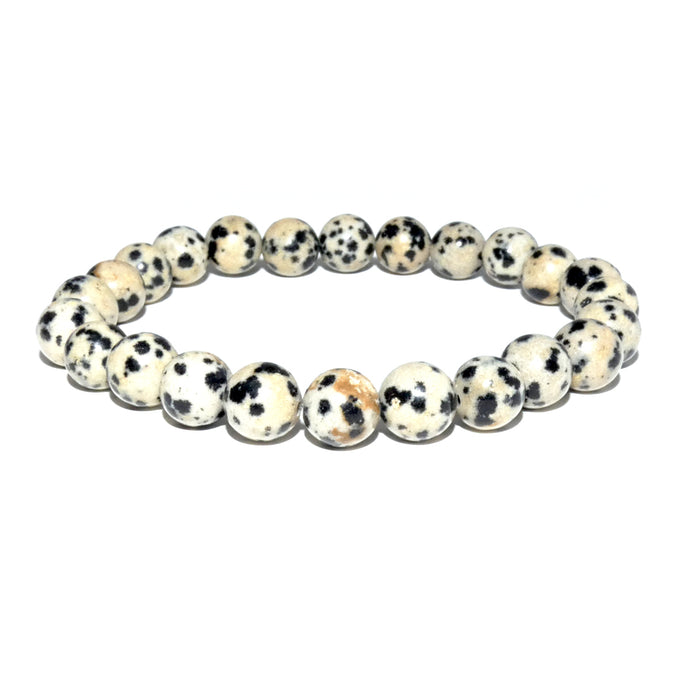 Dalmatian Jasper Nurturing & Playful 8mm Stretch Bracelet