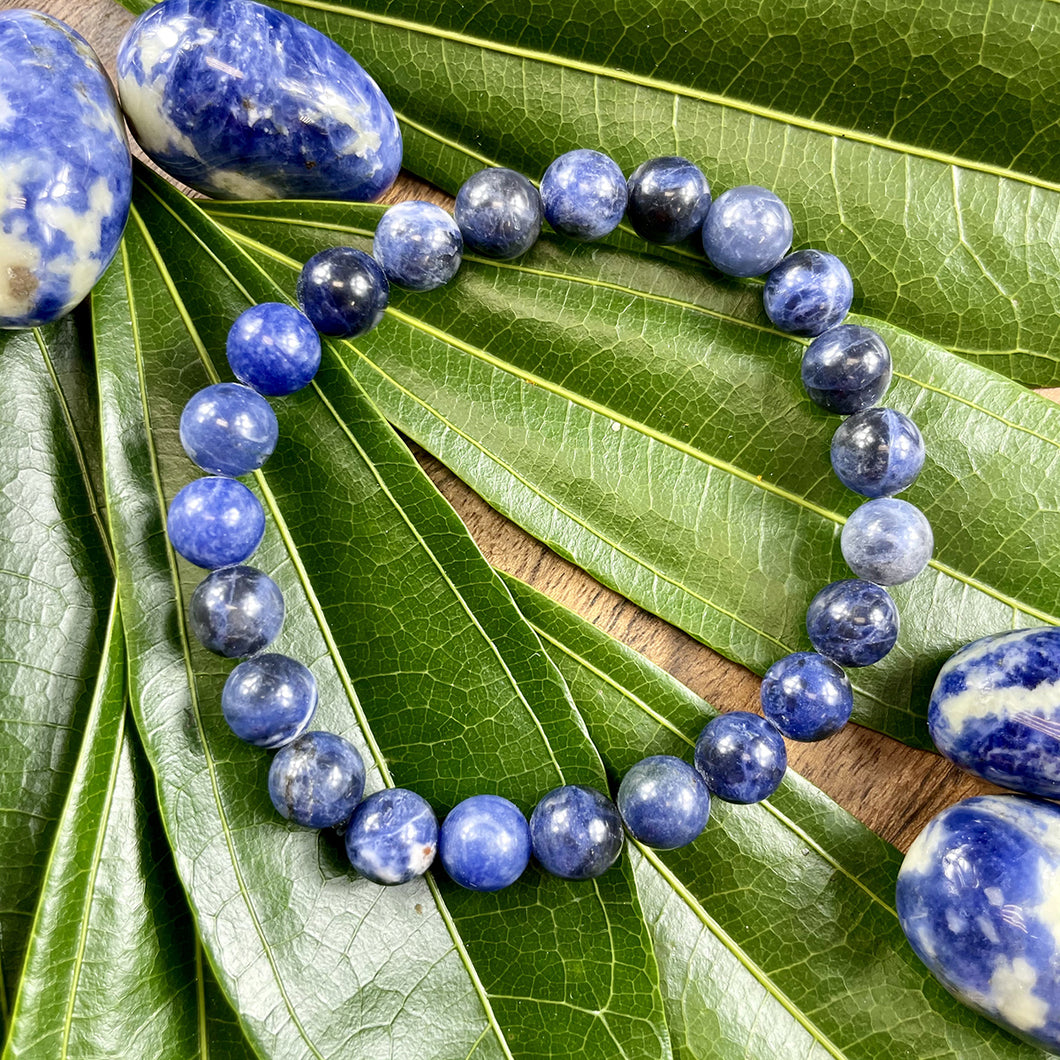 Sodalite Harmony and Truth 8mm Stretch Bracelet