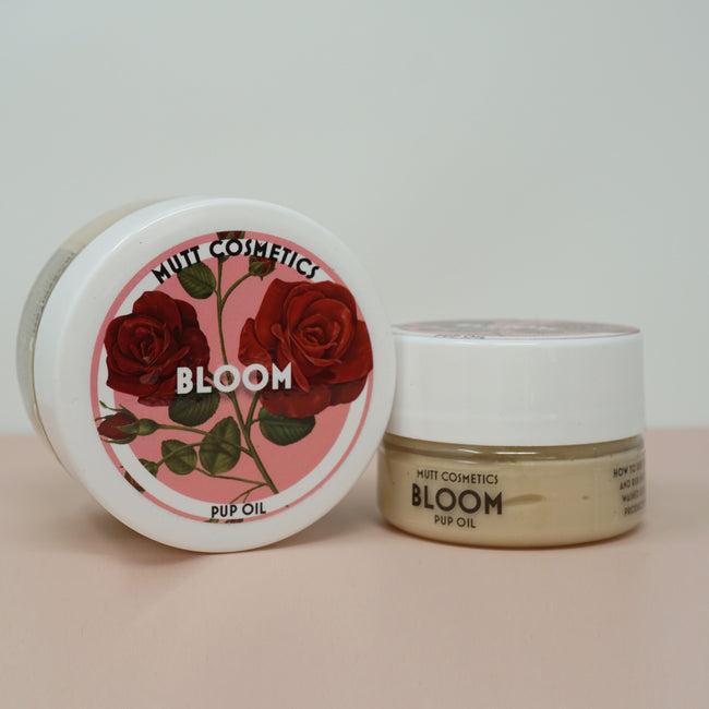 Bloom - Rose