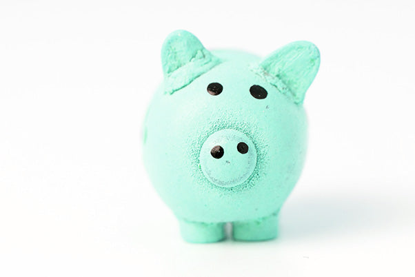 affordable pricing piggy bank