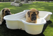 3 Bone Pool and 1 Paw Pool Package Package