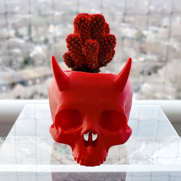Horned Skull Succulent Planter || goth garden accessory gardening pot evil devil plant holder 3d printed human skull gothic home decor