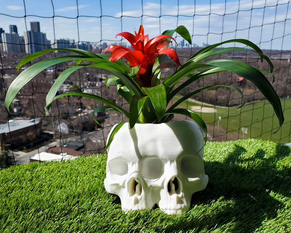 Conjoined Skull Planter || goth gothic garden accessories gardening pot makeup brush holder 3d print human skull witch witchy home decor
