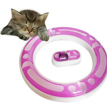 Track and ball cat toy
