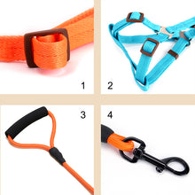 Dog, harness, collar and lead sets