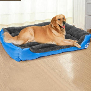Cozy Dog Beds