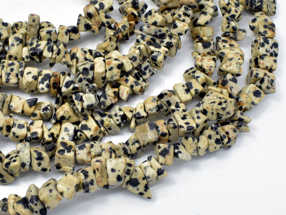 Dalmation Jasper Beads, 4-9mm Chips Beads, 34 Inch