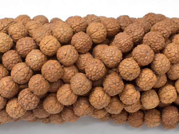 Rudraksha Beads, 9mm-9.5mm Round Beads, 34-37 Inch-BeadBasic