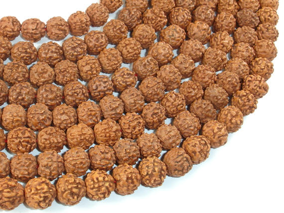 Rudraksha Beads, 9.5mm-10.5mm Round Beads-BeadBasic