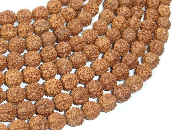 Rudraksha Beads, 9mm-9.5mm Round Beads, 36-38 Inch, Full stand