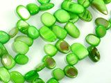 Mother of Pearl Beads, Green Shell, Top Drilled Free Form-BeadBasic