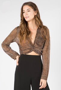 Metallic Sheer Crop Top