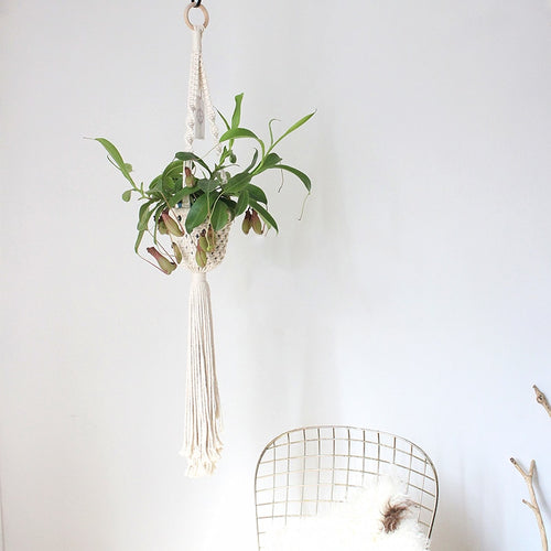 Hand Knit Cotton Plant Hanger