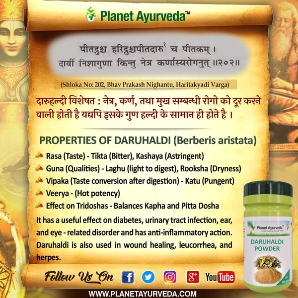 Authentic Ayurveda Information, Classical Reference of Daruhaldi, Berberis aristata