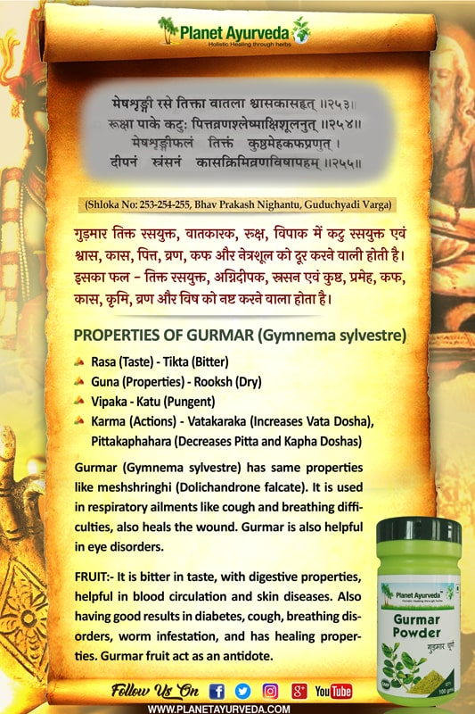 Classical Reference of Gurmar, Gymnema sylvestre